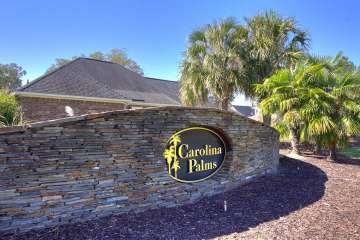 Carolina Palms